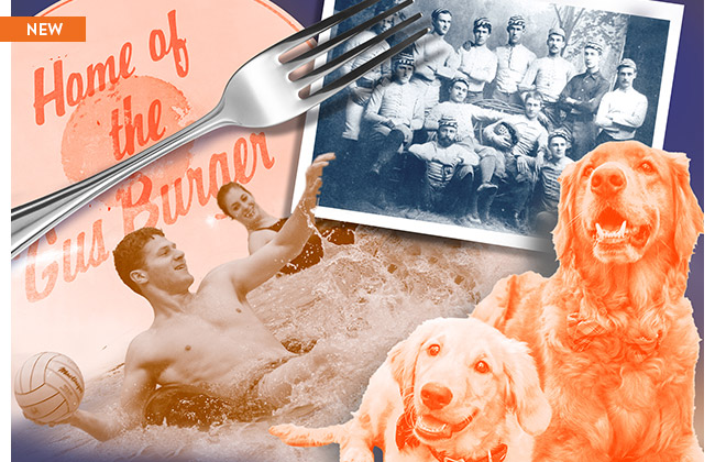 Our summer list of UVA fun facts.